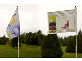 Windless Double Sided Pin Flags